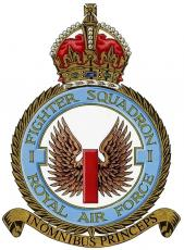Number 1 (Fighter) Squadron Association launches its new website